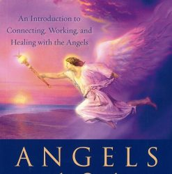 Angels 101 book