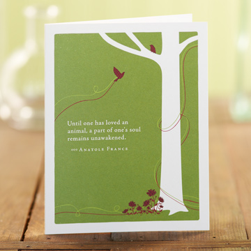 4544_pg_cards_4544_03