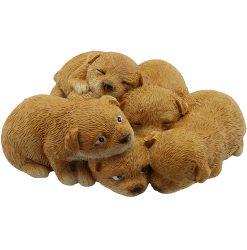 Puppies - Cuddle