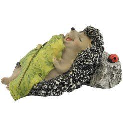 Echidna Sleeping