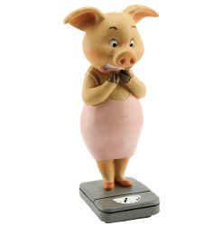 Chubby Pig