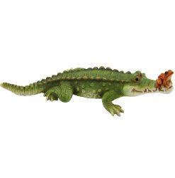 Crocodile & Frog