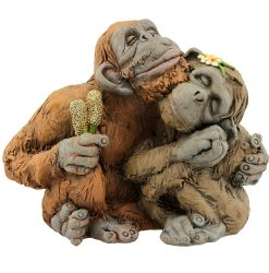 Orangutan Love Couple